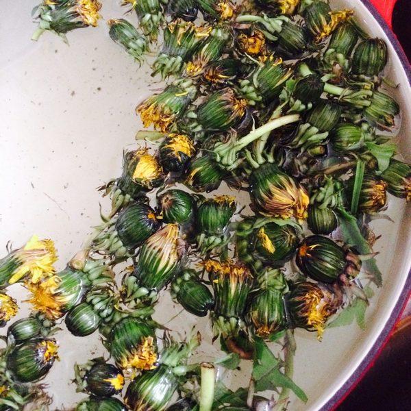 Najczęściej z mniszka wykorzystuje się liście do sałatek lub właśnie kwiaty do syropu